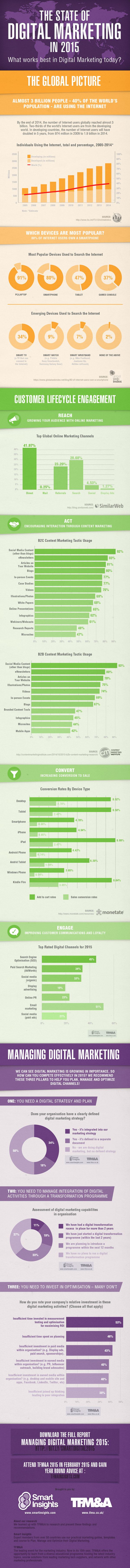 digital marketing insights infographic